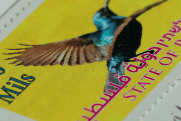 sunbird yellowstamp